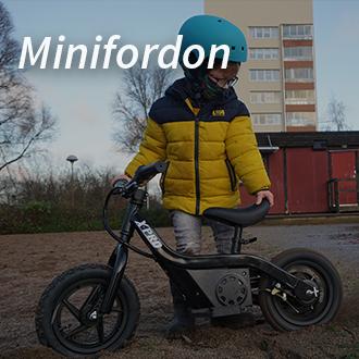 minifordon